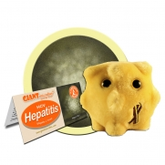 Hepatitis / Hepatit C