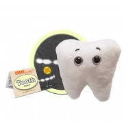 Tooth Molar/ Tand